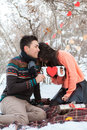 Asian couple in love on snow background Royalty Free Stock Photo