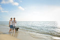 Asian couples dog beach against sunlight Royalty Free Stock Photo