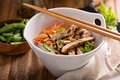 Asian cuisine chicken salad Royalty Free Stock Photo