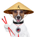 Asian dog with chopsticks and asia hat Royalty Free Stock Photo