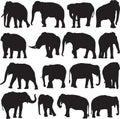 Asian elephant silhouette contour