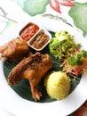 Asian ethnic cuisine, crispy fried duck Royalty Free Stock Photo
