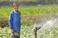 Asian farmer watering plant Royalty Free Stock Photography