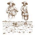 Asian farmers working on Field. Royalty Free Stock Photo