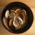 Asian fresh clams broth Stock Images
