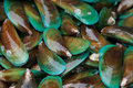 Asian green mussel food background Stock Photo