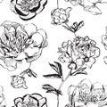 Asian ink peonies monochrome
