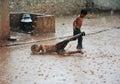 Kids in Heavy Rain