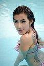 Asian lady wear bikini inswiming pool Royalty Free Stock Photography