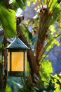 Asian lantern in a tree hanging tropical Stock Image