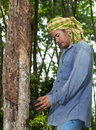 Asian man cutting rubber tree in thailand Stock Images