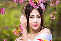 Asian sexy woman wearing traditional japanese kimono and wild himalayan cherry or cherry blossom Royalty Free Stock Photos