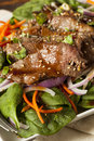 Asian sliced beef salad with spinach and carrots Royalty Free Stock Images