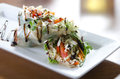 Asian Spring Rolls with Balsamic Vinaigrette Drizzle Royalty Free Stock Photo