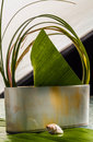 Asian still life with leaves and shells Royalty Free Stock Image