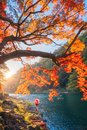 An Asian woman wearing Japanese traditional kimono with red umbrella standing with red maple leaves or fall foliage at Arashiyama Royalty Free Stock Photo