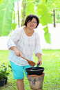 Asian women are cooking woman and happy Stock Photo