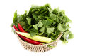 Asiatic pennywort and bell peppers in a wicker basket Stock Image
