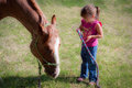 Asking the horse why a cute little girl holding lead rope of a grazing it Stock Images