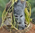 Asmat people mask for the rite. Royalty Free Stock Photo