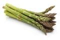 Asparagus Bundles Royalty Free Stock Photo
