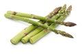 Asparagus Group
