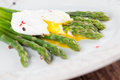 Asparagus with poached egg green on a plate Royalty Free Stock Image