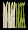 Asparagus white and green vegetable in black back Stock Images