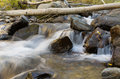 Aspen stream flowing through an glade with silky blurred water Stock Photos