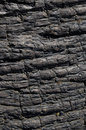 Asphalt Black on Big Island Royalty Free Stock Photos