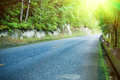Asphalt road through the forest in china Stock Photos
