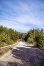Asphalt road through the green pine forest and clouds on blue sky empty Royalty Free Stock Photos