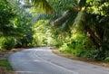 The asphalt road through tropical rain forest, Praslin Island; Seychelles Royalty Free Stock Photo