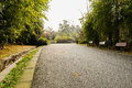 Asphalted road in warm sunlight of spirng afternoon spring chengdu china Royalty Free Stock Image