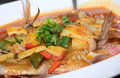 Assam steamed fish in spicy gravy a spicy asian delicacy Stock Images