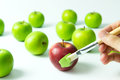 Assimilation or integration concept of by painting red apple into green color Stock Photography
