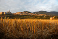 Assisi behind straws close up view of hay with the village of in the background Royalty Free Stock Images