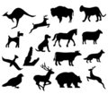 Assorted animal silhouettes Stock Photos