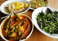 Assorted asian cuisine dishes Royalty Free Stock Photos