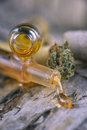 Assorted Cannabis Oil Containe...