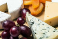 Assorted cheeses with mold, Maasdam, Roquefort, brie Royalty Free Stock Photo
