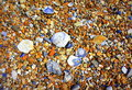 Assorted colorful beach pebbles closeup Royalty Free Stock Photo