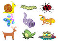 Assorted Cute Animal Illustration in Vector Stock Photography