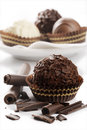 Assorted of fine chocolates Royalty Free Stock Photo