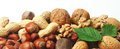 Assorted fresh nuts horizontal banner Royalty Free Stock Photo
