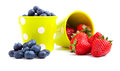 Assorted fresh picked berries Royalty Free Stock Photos