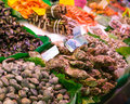 Assorted mollusks on ice in seafood market Stock Photos