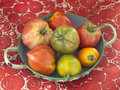 Assorted old-fashioned organic tomatoes Royalty Free Stock Photos