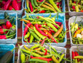 Assorted Peppers Royalty Free Stock Photo
