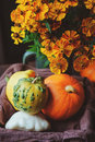 Assorted pumpkins and squash picked up in basket at country house with seasonal flowers Royalty Free Stock Photo